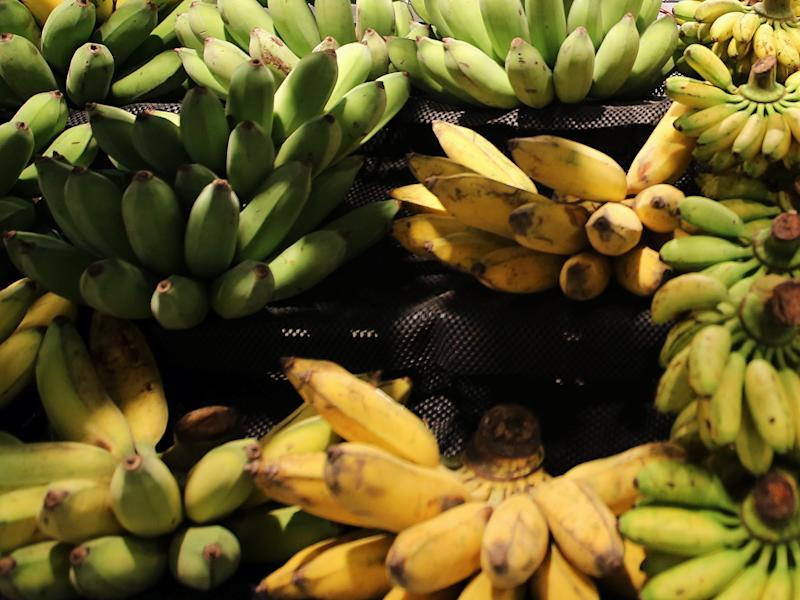 (Bloomberg) -- Chinese consumers are buying more bananas from abroad than ever before as an increasingly health conscious middle class help propel the fruit's popularity.Imports of bananas surged to a record 227,199 tons in May, according to China's general administration of customs. That helped lift total shipments of fruits and nuts to 720,000 tons, an almost 8-fold increase from the same period last year.Restrained by limited farmland and a destructive banana fungus known as the Panama disease, China has been increasing its reliance on supplies from Southeast Asia and South America. Demand for bananas is being encouraged by rising incomes and the increasing popularity of diets in China, including for use in smoothies and as banana chips.China overtook Japan as the biggest foreign market for bananas from the Philippines last year, according to Xinhua News Agency. The country procured more than two-thirds of exports from the Southeast Asian country in 2018 while also expanding supplies from other producers such as Mexico and Cambodia. China bought 1.54 million tons of bananas in 2018, a 50% surge from a year ago, customs data shows.Fresh fruit prices were at a historical high in China last month, triggering concerns over accelerating inflation. Fruit and nut imports had surged to a record in April amid rising local prices.That momentum could subside in summer as supplies increase, according to Lu Ting, chief China economist at Nomura Holdings Inc. in Hong Kong. Imports will likely become the biggest factor for the direction of domestic prices, according to a Xinhua report in May, citing research from its think-tank unit.To contact the reporter on this story: Alfred Cang in Singapore at acang@bloomberg.netTo contact the editors responsible for this story: Anna Kitanaka at akitanaka@bloomberg.net, Jason RogersFor more articles like this, please visit us at bloomberg.com©2019 Bloomberg L.P.