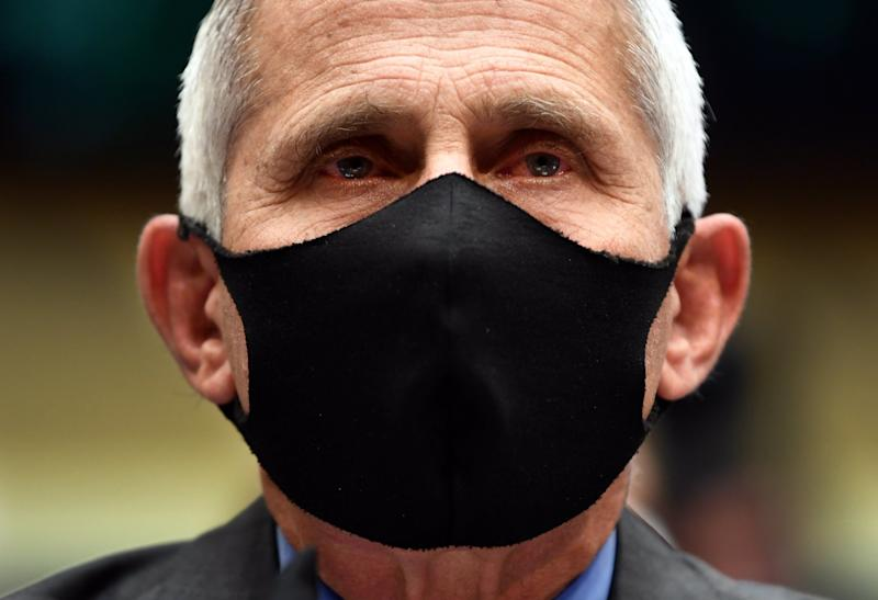 A masked Dr Anthony Fauci testifies to a house committee, June 2020: EPA