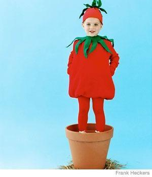 "<div class=""caption-credit""> Photo by: Frank Heckers</div><div class=""caption-title"">Tomato Costume</div><p> This cute costume starts with an oversize sweatshirt -- no sewing needed. <br> </p> <p> <a href=""http://www.parenting.com/article/Toddler/Activities/Tomato?src=syn&dom=shine"" rel=""nofollow noopener"" target=""_blank"" data-ylk=""slk:How to Make the Tomato Costume"" class=""link rapid-noclick-resp"">How to Make the Tomato Costume</a> <br> <a href=""http://www.parenting.com/activity-parties-article/Activities-Parties/Celebrations/Halloween-Central-21355156?src=syn&dom=shine"" rel=""nofollow noopener"" target=""_blank"" data-ylk=""slk:More Costumes at Halloween Central"" class=""link rapid-noclick-resp"">More Costumes at Halloween Central</a> </p>"