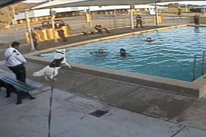 Kids Allegedly Intimidated With Dogs, Stripped Naked And