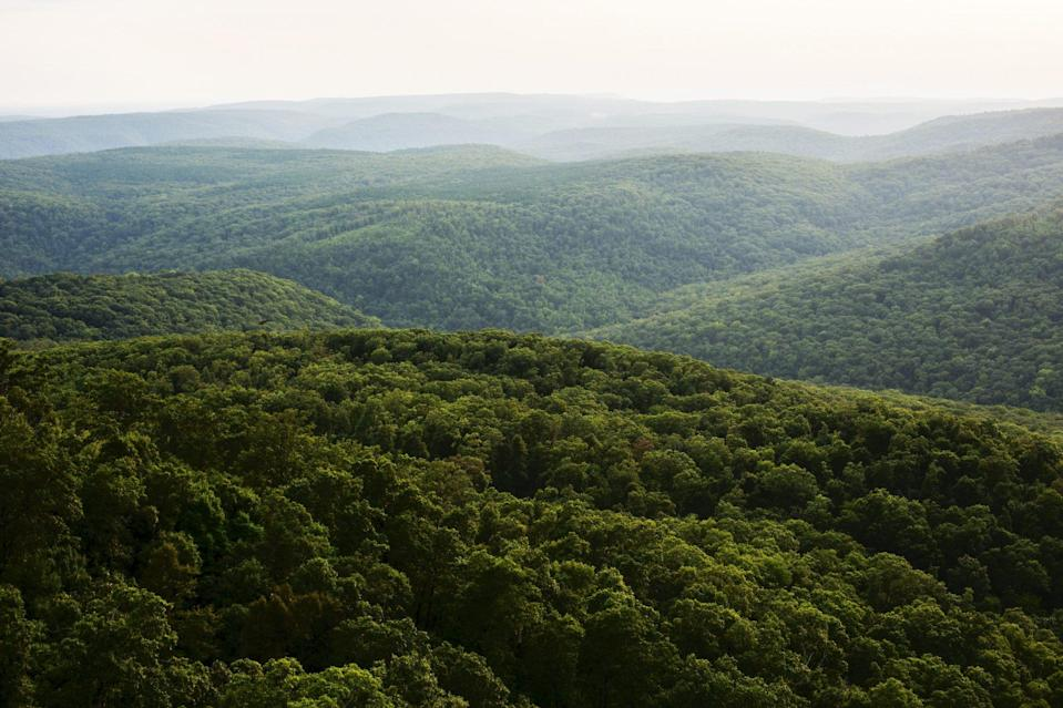 <p>Part of the Ozark Mountains, this subrange rises 200 miles through northwest Arkansas and northeast Oklahoma. It comprises the highest areas of the Ozarks and are bounded by rivers: the White River to the north and the Arkansas River to the south. </p>