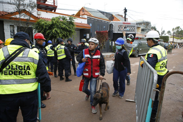<p>A search dog is walked into the area of rescue efforts at the Enrique Rebsamen school in Mexico City, Mexico, on Sept. 21, 2017. (Photo/Rebecca Blackwell/AP) </p>