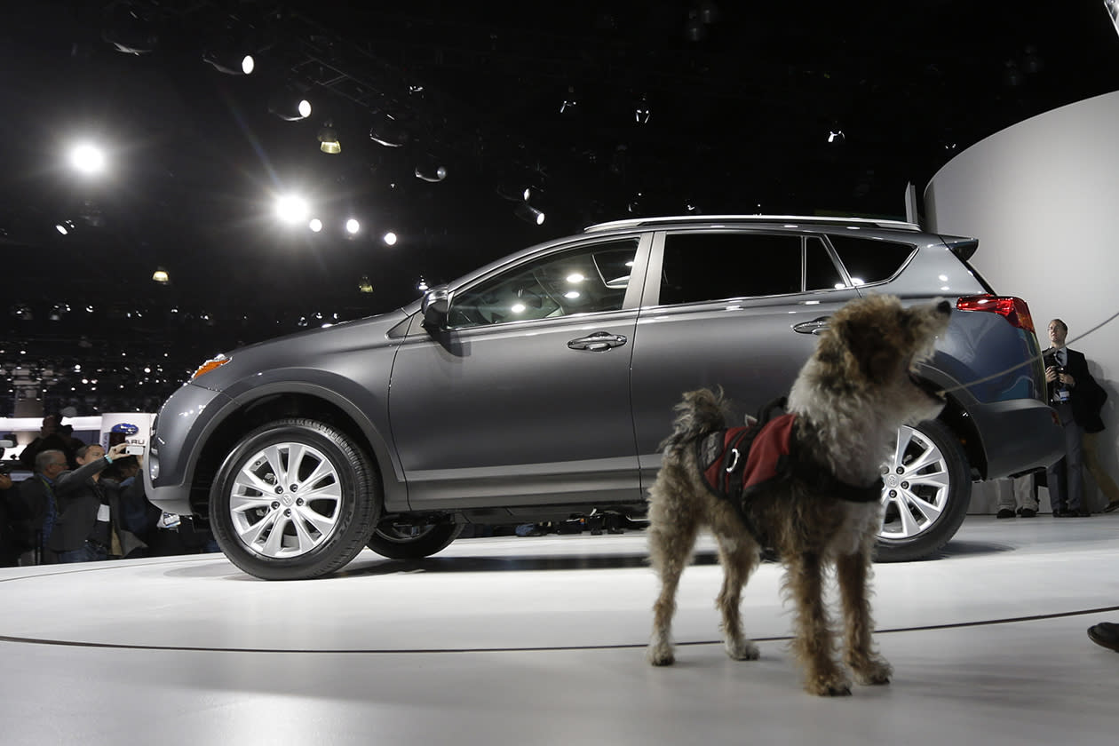 <b>Toyota RAV4</b><br><br>A service dog named Cookie walks around the Toyota RAV4 during it's world debut at the LA Auto Show.