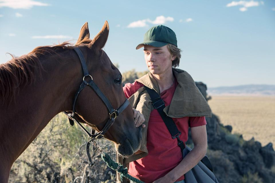 "<h1 class=""title"">Lean on Pete</h1> <cite class=""credit"">Everett Collection</cite>"