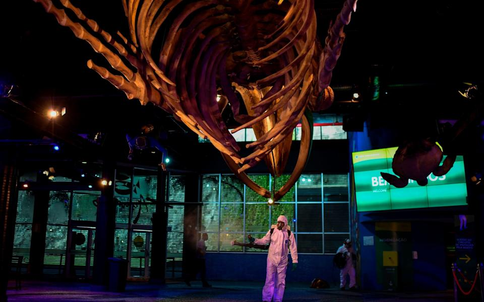 A worker of AquaRio disinfects the lobby entrance of the Rio de Janeiro Aquarium under the skeleton of a humpback whale prior to the reopening of the tourist attraction - MAURO PIMENTEL/AFP