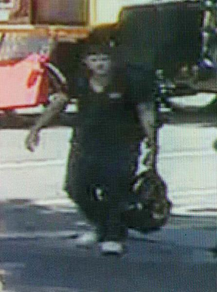 This image taken from surveillance video and provided by the New York City Police Department on Wednesday, Sept. 12, 2012, shows a man believed to have mugged and sexually assaulted a 73 year old woman in New York's Central Park. The woman was attacked about 11 a.m. while bird watching near the park's tranquil Strawberry Fields that serves as a memorial to John Lennon. (AP Photo/New York Police Department)