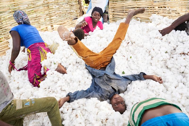 Dyed in the wool: Cotton supports a quarter of the population of Mali, which has retaken the title of Africa's cotton champion (AFP Photo/MICHELE CATTANI)