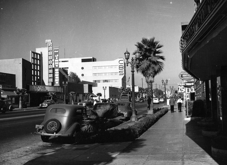 <p>On a seemingly more peaceful day in 1945, you can see a palm tree along the side of Sunset Boulevard in Los Angeles. </p>