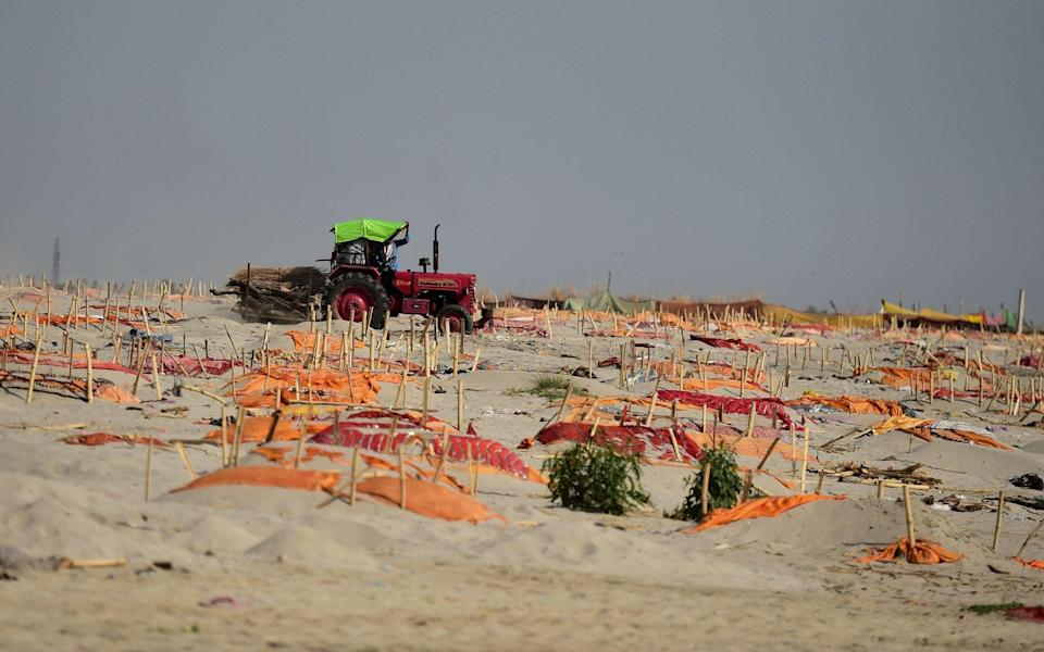 A tractor carrying logs for cremation drives past shallow graves covered with saffron clothes of suspected Covid vicitims near a cremation ground on the banks of the Ganges River in Shringverpur village - SANJAY KANOJIA/AFP