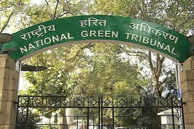 NGT to Hear Cases from Dais Starting June 8, but through Video Conferencing