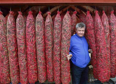 Local policeman and paprika maker Zsolt Matos is seen from between hanging bags of drying peppers, near Batya, 140km south of Budapest September 21, 2013. REUTERS/Laszlo Balogh