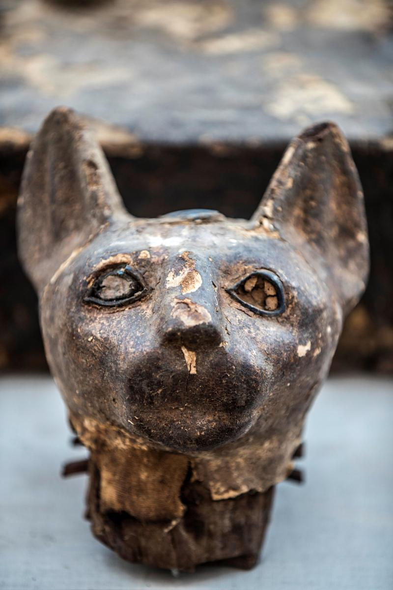 GettyImages 1184126829 mummy cat