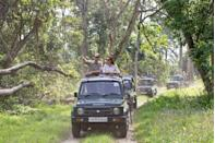<p>While on a royal tour of India and Bhutan in 2016, Prince William and Kate Middleton enjoyed an open jeep safari in India's Kaziranga National Park.</p>