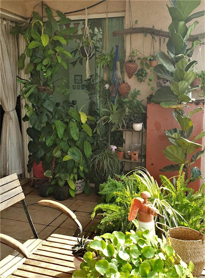 """The balcony garden is where we all are spending most of our time. I'm very happy to have invested the time and energy to nurture and grow my plant babies. It has paid off in spades."""