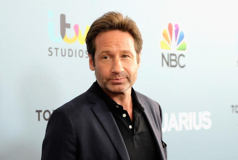 David Duchovny had his cab stolen by some fans. Photo from Getty Images