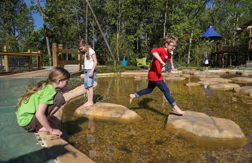 Kids explore the bullfrog pond at Waterfall Junction. Come before the film at Twilight in the Garden to enjoy one of the zoo's newest features.