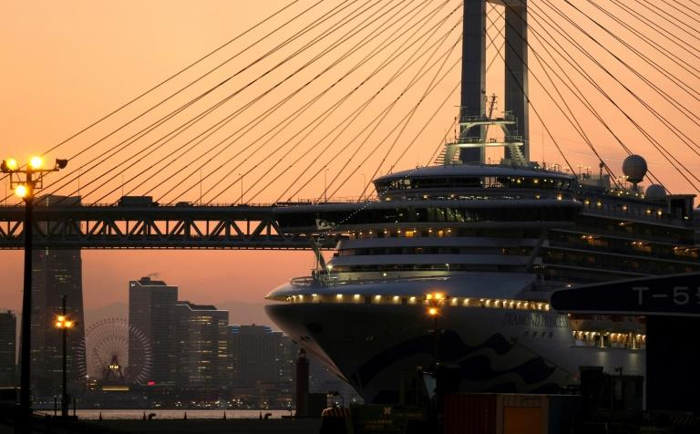 The Diamond Princess cruise ship in quarantine at Daikoku pier cruise terminal in Yokohama (AFP Photo/Kazuhiro NOGI)