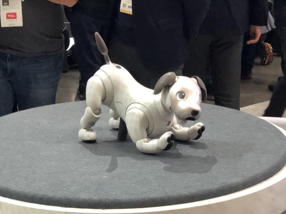 <p>Sony's much-loved robot dog Aibo made a return on stage at CES this year. The new AIBO can run toward its owner and detect smiles and words of praise, and can remember what actions please the owner. Its eerie, glowing eyes are made of organic light emitting diode (OLED) displays which allow it to display robotic emotions. </p>
