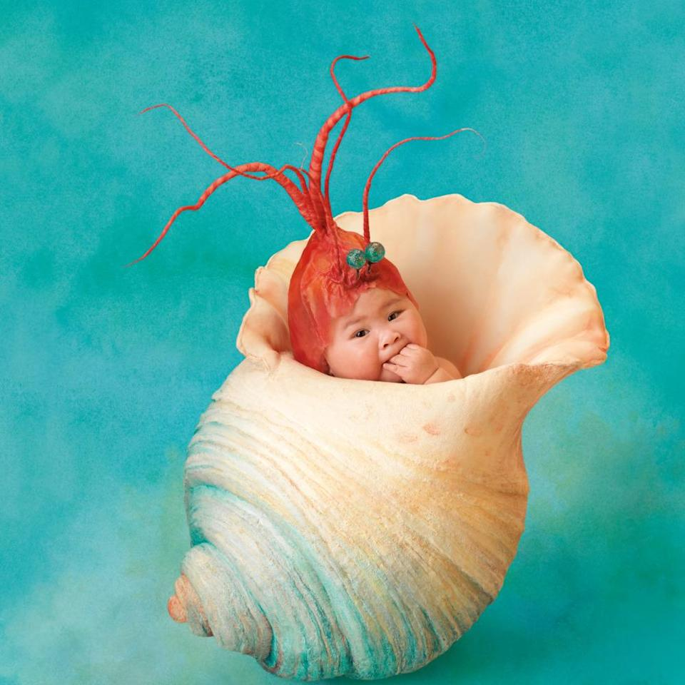 Click through the gallery to see what these Anne Geddes babies look like today. (photo: Anne Geddes)