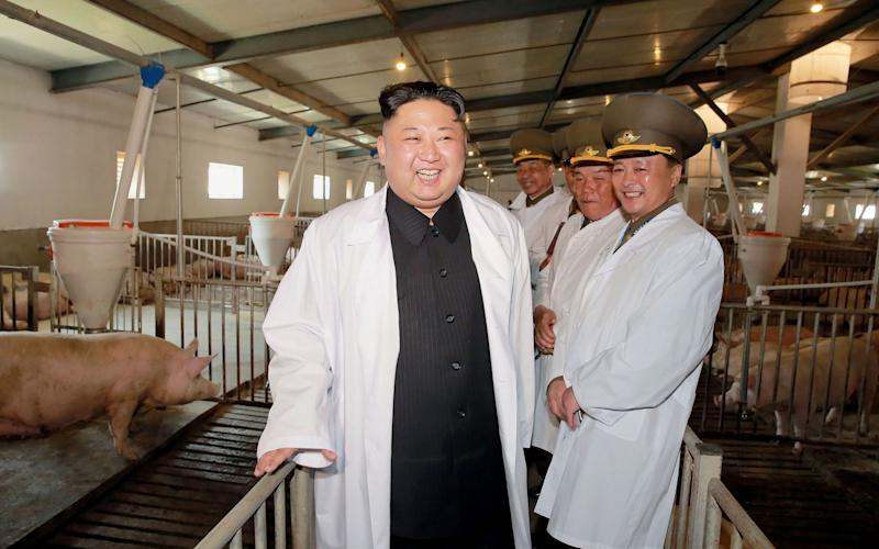 This undated picture released by North Korea's official Korean Central News Agency (KCNA) via KNS on April 23, 2017 shows North Korean leader Kim Jong-Un (L) visiting a pig farm - Credit: AFP