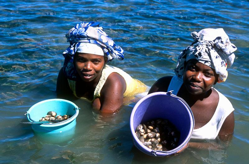 Women harvesting sea and shellfood food in buckets from the tidal marshes of Nosy Be Island, Madagascar. © Hartmut Jungius/WWF-Cannon