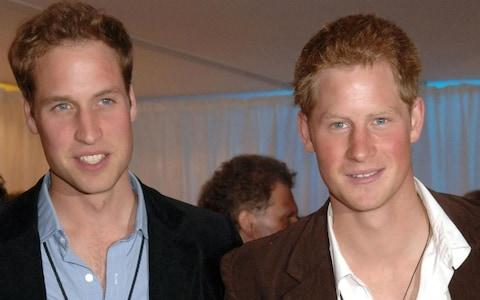 """Young, brave, boisterous"" Prince Harry, pictured with Prince William in 2007 - Credit: Richard Young/AP"