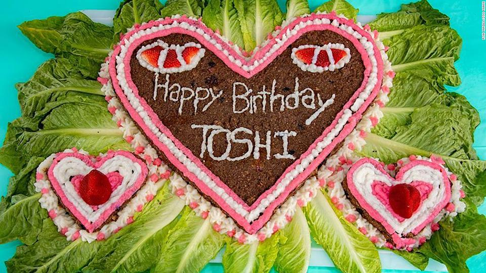 """<p>Toshi celebrated his birthday with a special cake made for him.</p><div class=""""cnn--image__credit""""><em><small>Credit: Ron Magill/Zoo Miami / Zoo Miami</small></em></div>"""