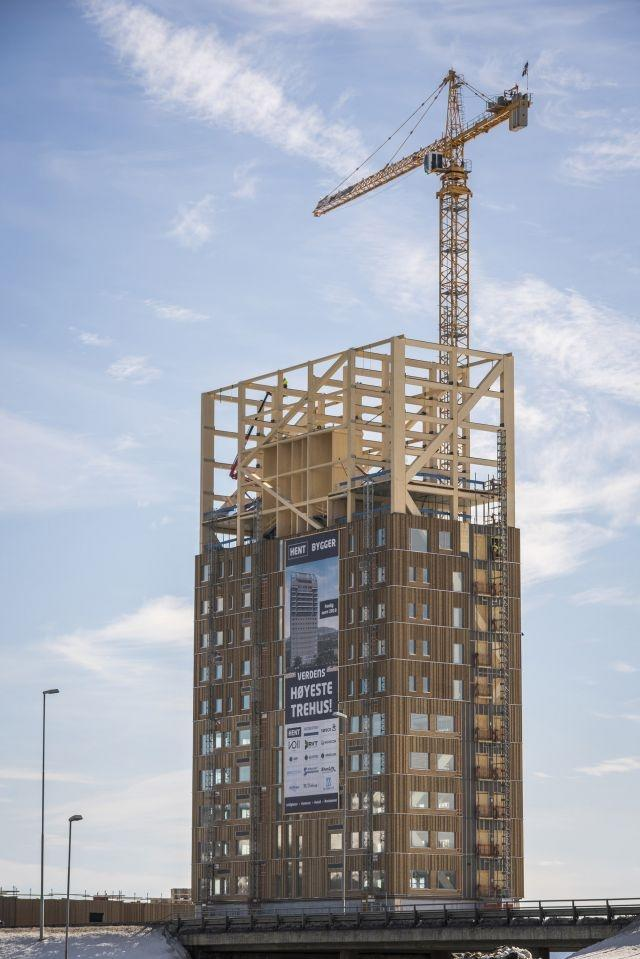Norway builds world's tallest timber tower