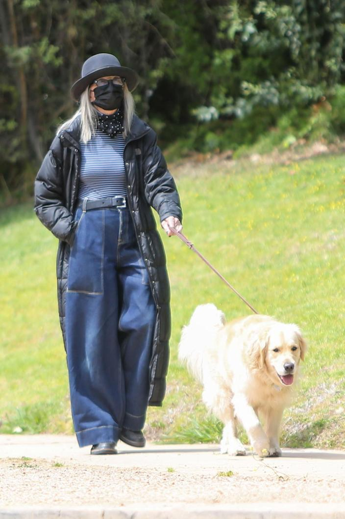 <p>Diane Keaton was spotted walking her dog in Los Angeles.</p>