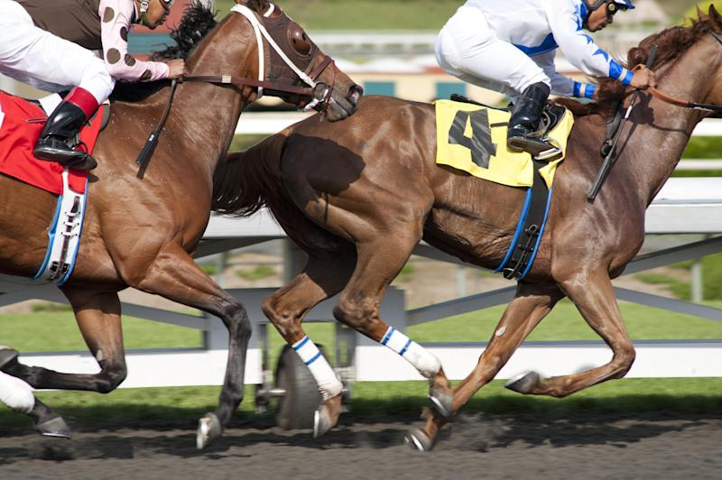 "In this image released by HBO, horses race in a scene from the HBO original series ""Luck.""  HBO says a horse used for the racetrack drama ""Luck,"" was euthanized after suffering an injury. The animal was being led to a Los Angeles-area racetrack stable when it reared and fell back Tuesday morning, suffering a head injury, according to HBO. The horse was euthanized at the Santa Anita Park racetrack in Arcadia, where ""Luck"" is filming its second season.  It's the third horse death to occur during production of the series starring Dustin Hoffman and Nick Nolte. (AP Photo/HBO, Gusmano Cesaretti)"