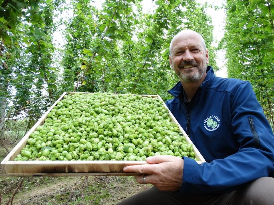 Paul Corbett with a tray of British grown hops. (Credit: Tesco/PA)