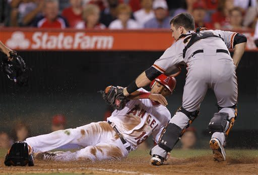 Los Angeles Angels' Maicer Izturis, left, is tagged out out by San Francisco Giants catcher Buster Posey while trying to score on a ball hit by Mike Trout during the fourth inning of a baseball game in Anaheim, Calif., Monday, June 18, 2012. (AP Photo/Chris Carlson)