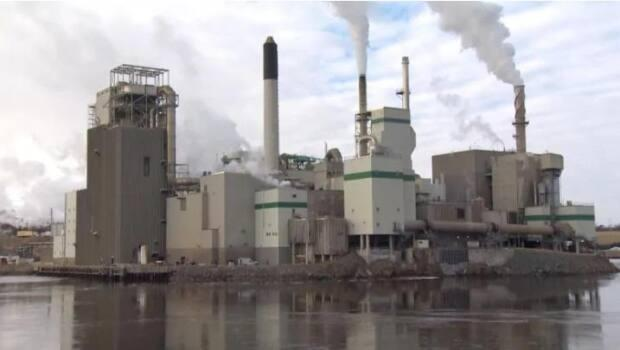 Province has increased subsidies to major pulp and paper mills owned by J.D. Irving Ltd., Twin Rivers Paper Co. Ltd. and the AV Group. (Roger Cosman/CBC - image credit)