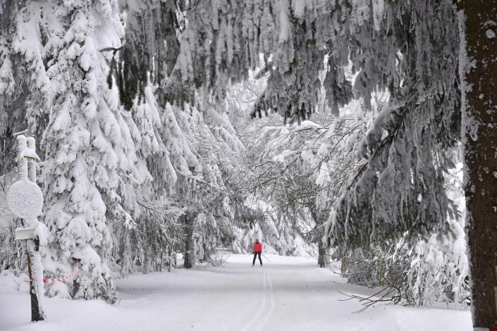 Deeply covered with snow are the trees at the Grenzadler in Oberhof, Germany, Sunday, Jan. 17, 2021. Two World Cups are taking place in the town on the Rennsteig this weekend. In front of empty crowds, the best lugers and biathletes compete for World Cup points. (Martin Schutt/dpa via AP)