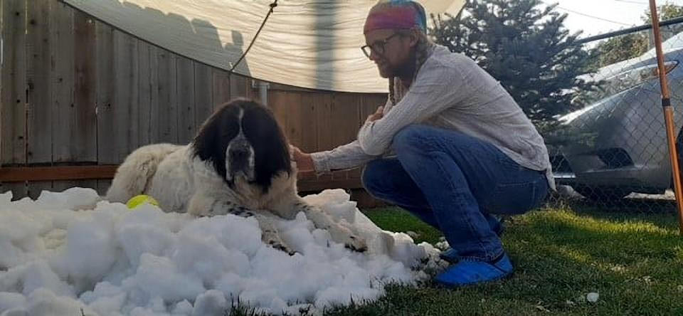 Elijah Saltzgaber with his dog, Maggie, who died of cancer. She sits on a mound of makeshift snow.