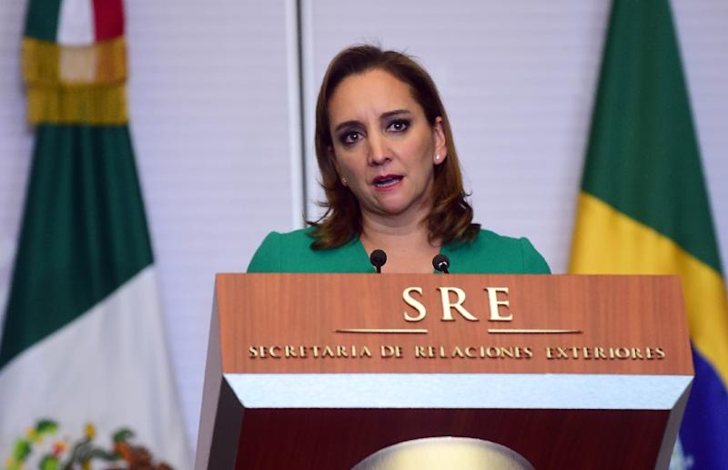 "Mexican Foreign Minister Claudia Ruiz Massieu said Mexico is willing to ""modernize"" the North American Free Trade Agreement with Canada and the US (AFP Photo/Alfredo Estrella)"