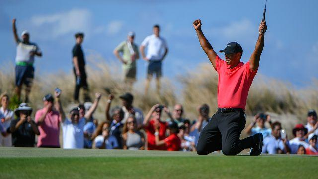 Tiger reacts to his eagle. Image: Getty