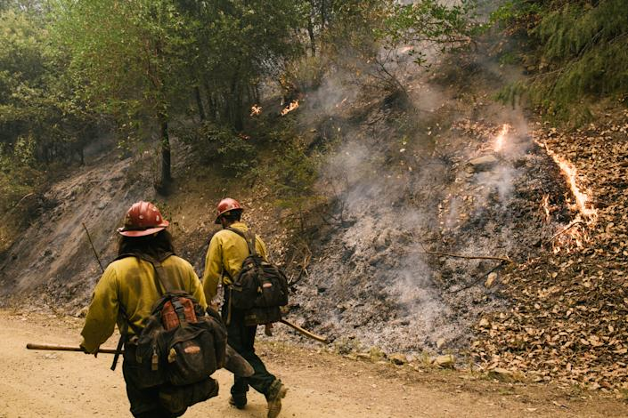 Fire crews hold the line and perform strategic firing operations on the McCash Fire on Aug. 23. (Alexandra Hootnick for Yahoo News)