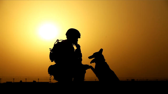"""This 2012 publicity photo provided by Animal Planet shows a soldier and military working dog, in Afghanistan. Animal Planet embedded four camera crews with front line troops for six weeks to create a television special called """"Glory Hounds,"""" where each crew was assigned to a handler and his dog and the show set out to prove that dogs were more than military """"tools."""" """"Glory Hounds"""" airs Thursday, Feb. 21, 2013 at 8 p.m. ET/PT and repeats on Feb. 24 at 9 a.m. ET/PT. (AP Photo/Animal Planet)"""