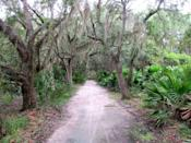 "<p>The biking and hiking trails of the <a href=""https://www.tripadvisor.com/Attraction_Review-g35034-d11732975-Reviews-Jekyll_Island_Trail_System-Jekyll_Island_Golden_Isles_of_Georgia_Georgia.html"" rel=""nofollow noopener"" target=""_blank"" data-ylk=""slk:Jekyll Island Trail System"" class=""link rapid-noclick-resp"">Jekyll Island Trail System</a> provide plenty of tourist diversions, like a miniature golf course, local hotels, and historical markers. And it doesn't get much more Southern than watching the Spanish moss sway in the trees along the trails.</p><p><br><a class=""link rapid-noclick-resp"" href=""https://go.redirectingat.com?id=74968X1596630&url=https%3A%2F%2Fwww.tripadvisor.com%2FAttraction_Review-g35034-d11732975-Reviews-Jekyll_Island_Trail_System-Jekyll_Island_Golden_Isles_of_Georgia_Georgia.html&sref=https%3A%2F%2Fwww.redbookmag.com%2Flife%2Fg34357299%2Fbest-hikes-in-the-us%2F"" rel=""nofollow noopener"" target=""_blank"" data-ylk=""slk:PLAN YOUR HIKE"">PLAN YOUR HIKE</a></p>"