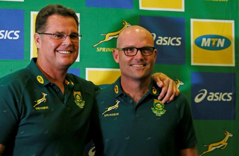 Dilemma for Springboks as Championship decision looms
