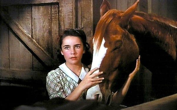"""Taylor and King Charles in """"National Velvet."""" <p class=""""copyright"""">Metro-Goldwyn-Mayer</p>"""