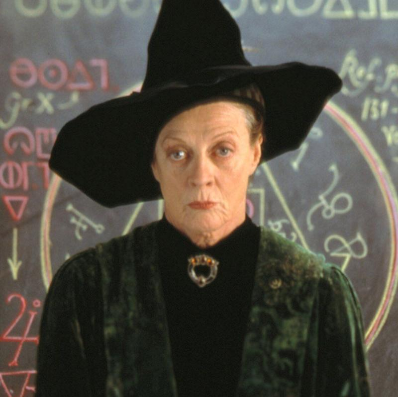 Dame Maggie in Harry Potter (Photo: Warner Bros)
