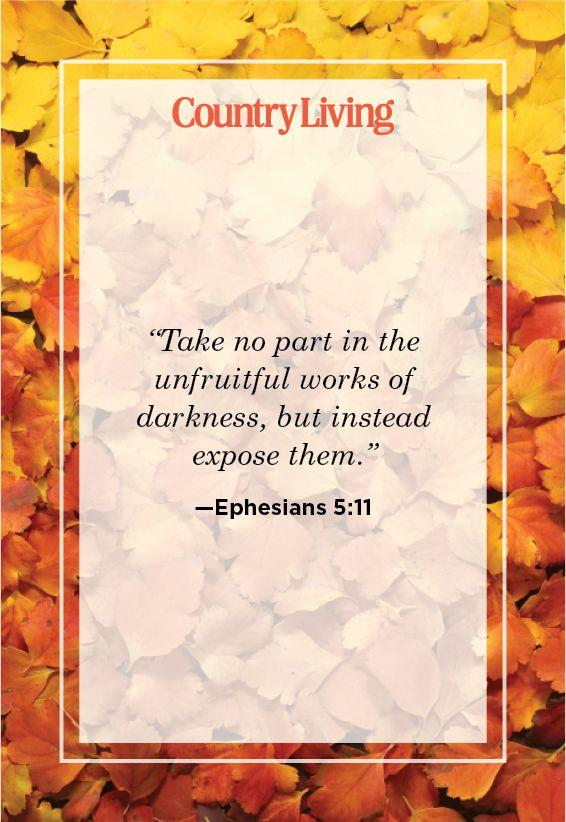 """<p>""""Take no part in the unfruitful works of darkness, but instead expose them.""""</p>"""