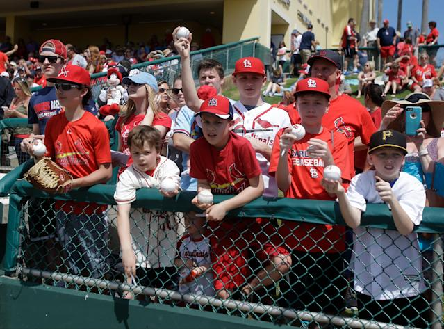Cardinals fans are often called the best in baseball. (AP Photo)