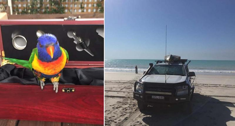 The bird has been in the family for 12 years (left). The car that was stolen can be seen on the beach (right).