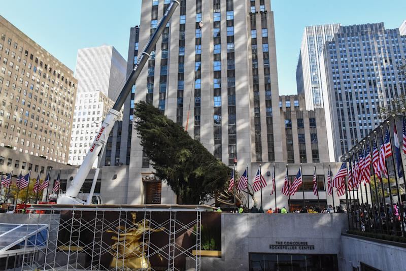 A crane hoists the Rockefeller Center tree upright on Saturday in New York City. (Stephanie Keith via Getty Images)