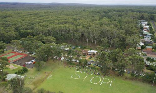 Manyana bushland clearing halted as protest group launches federal court challenge