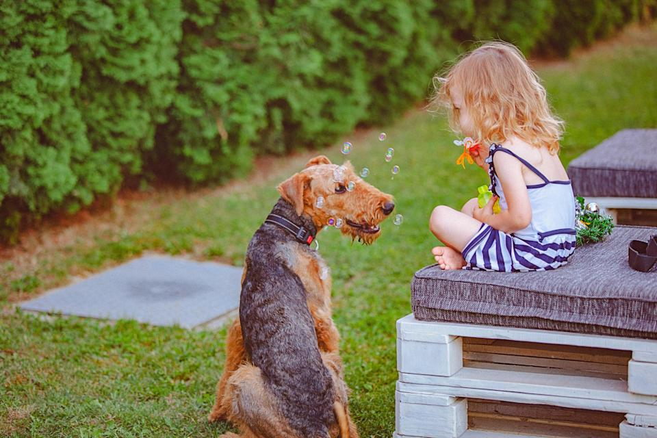 Pets can bring a bundle of joy to any family so long as they are always supervised around young kids. Source: Getty
