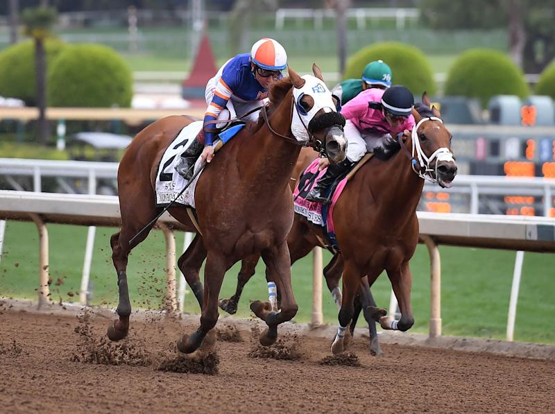Horses race at the Santa Anita Racetrack as controversy continues over the high number of horse deaths at the track in Arcadia, California on May 26, 2019. - Santa Anita Park averaged more than 55 horse deaths per year from 2008-18, according to data from the California Horse Racing Board, a total of 553 deaths in all, but this year's major rise in deaths is under investigation. (Photo by Mark RALSTON / AFP) (Photo credit should read MARK RALSTON/AFP/Getty Images)